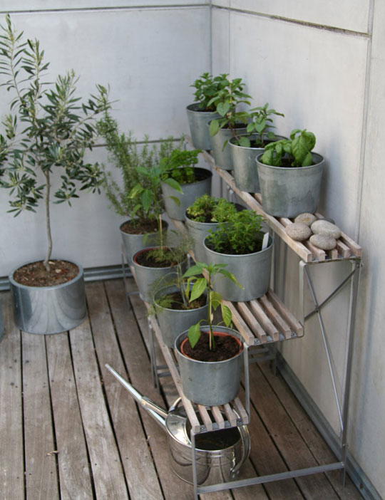Deck Outdoor Urban Flower Container Gardening Style Domination