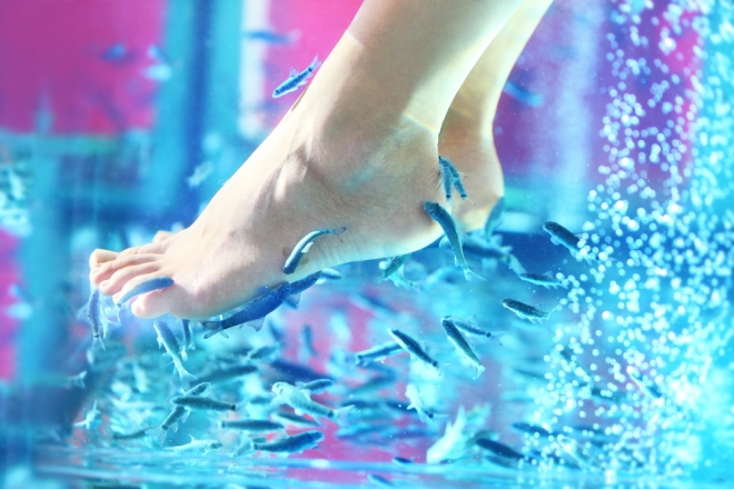 Turkish gurra fish pedicure Style Domination 10 things to know about pedis beauty blogger fashion blog